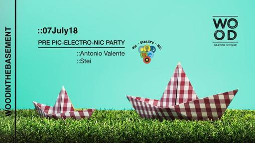 Pre Pic Electro Nic Party | WoodInTheBasement
