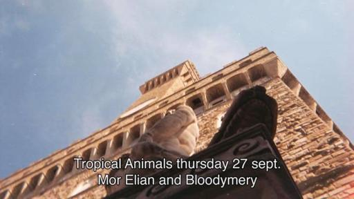 Tropical Animals: Mor Elian and Bloodymery