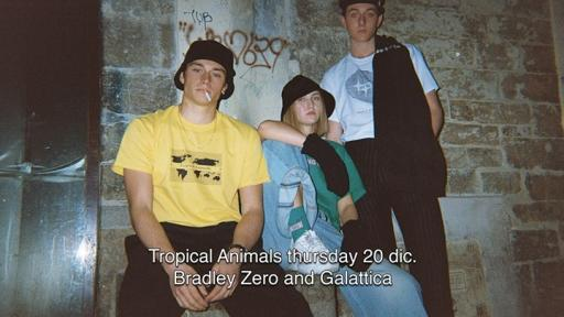 Tropical Animals: Bradley Zero & Galactic