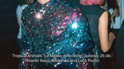 """Tropical Animals Christmas Night - """"The Mass of the Night"""""""