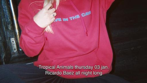 Tropical Animals: Ricardo Baez all night long